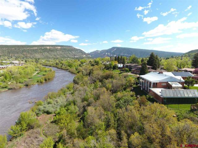 107 Riverview Drive, Durango, CO 81301 (MLS #754770) :: Durango Mountain Realty