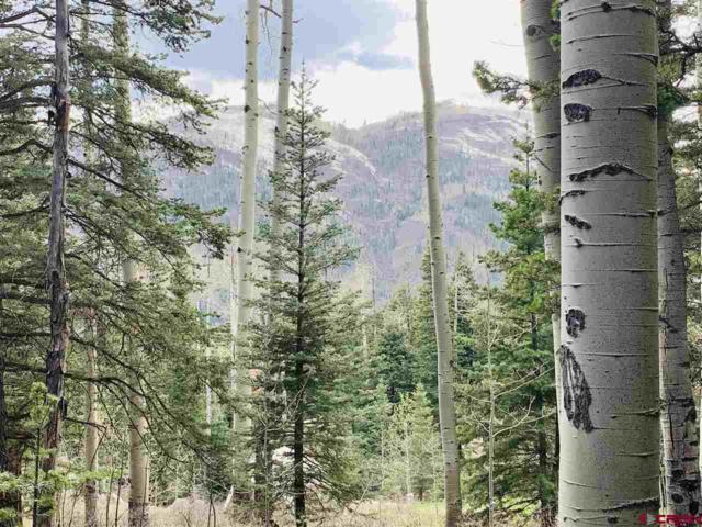 TBD Grizzly Lane, Durango, CO 81301 (MLS #755297) :: Durango Mountain Realty