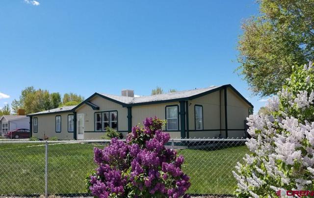 63934 Nancy Way, Montrose, CO 81401 (MLS #755413) :: The Dawn Howe Group   Keller Williams Colorado West Realty