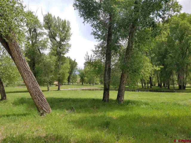 695 Hermosa Meadows Road, Durango, CO 81301 (MLS #755731) :: Durango Mountain Realty