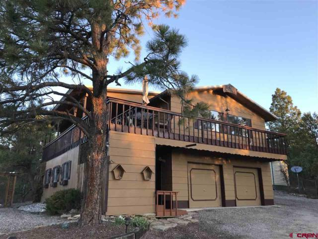 227 Hideaway Rd., Durango, CO 81303 (MLS #755750) :: Durango Mountain Realty