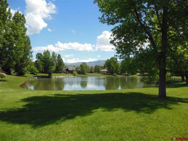232 Crazy Horse, Durango, CO 81301 (MLS #755811) :: Durango Mountain Realty