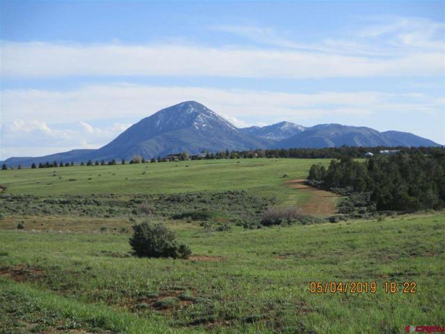 13446 Road 17.9 Loop (G) Lot #11, Cortez, CO 81321 (MLS #756623) :: The Dawn Howe Group | Keller Williams Colorado West Realty