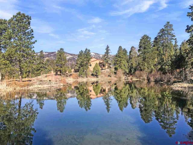 1401 Celadon Drive East, Durango, CO 81301 (MLS #756975) :: Durango Mountain Realty