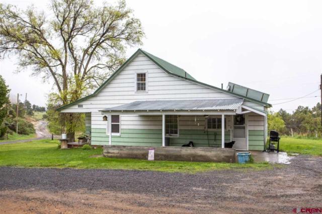 18859 Green Valley Road, Cedaredge, CO 81413 (MLS #757129) :: The Dawn Howe Group   Keller Williams Colorado West Realty