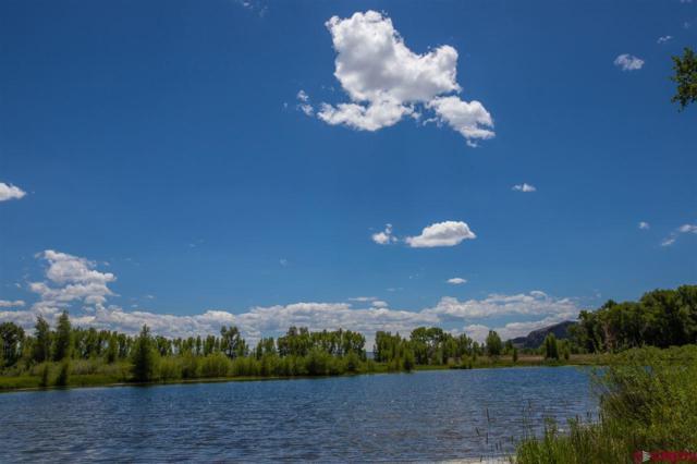 156 Kokanee Court, Gunnison, CO 81230 (MLS #757166) :: The Dawn Howe Group | Keller Williams Colorado West Realty