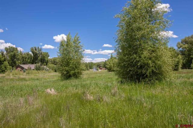 235 Kokanee Court, Gunnison, CO 81230 (MLS #757170) :: The Dawn Howe Group | Keller Williams Colorado West Realty