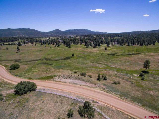 701 Cr 125, Hesperus, CO 81326 (MLS #757396) :: Durango Mountain Realty