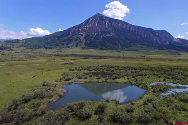 341 Mccormick Ranch Road, Crested Butte, CO 81224 (MLS #757733) :: The Dawn Howe Group | Keller Williams Colorado West Realty