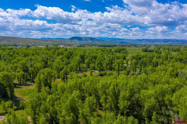 451 Kokanee Court, Gunnison, CO 81230 (MLS #757790) :: The Dawn Howe Group | Keller Williams Colorado West Realty