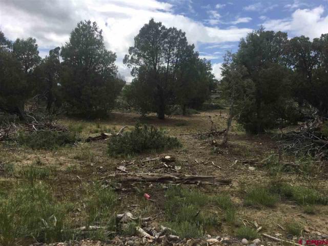 703 & 723 Wandering Hills Pl, Arboles, CO 81121 (MLS #757830) :: The Dawn Howe Group | Keller Williams Colorado West Realty