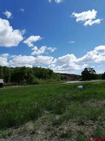 Lot #15 W Riverside Court, South Fork, CO 81154 (MLS #758821) :: The Dawn Howe Group | Keller Williams Colorado West Realty