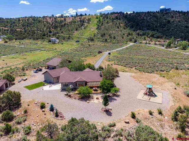 63 Walker Lane, Durango, CO 81303 (MLS #759006) :: Durango Mountain Realty