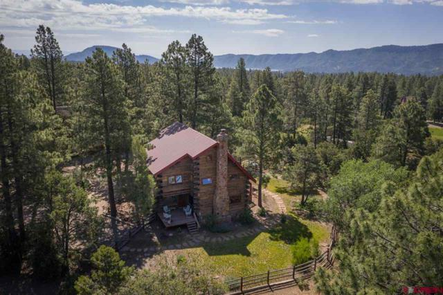 190 Lower Road, Durango, CO 81303 (MLS #759531) :: Durango Mountain Realty