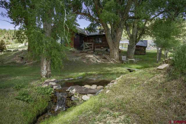 307 County Road 28, Powderhorn, CO 81243 (MLS #759577) :: The Dawn Howe Group | Keller Williams Colorado West Realty