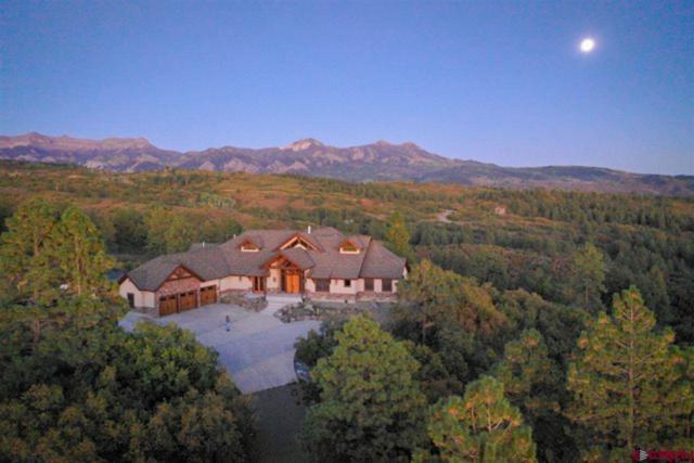 401 Soaring Eagle, Chromo, CO 81128 (MLS #759652) :: The Dawn Howe Group | Keller Williams Colorado West Realty