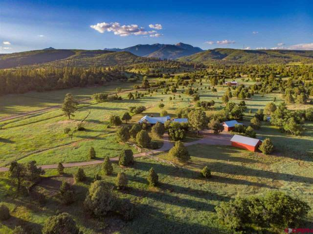 720 Cross Creek Road, Hesperus, CO 81326 (MLS #759933) :: Durango Mountain Realty