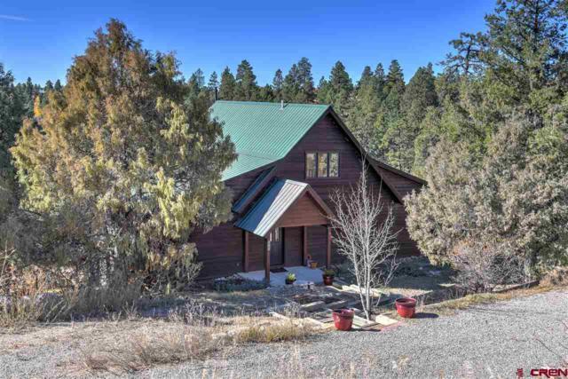 301 Gulch Road, Durango, CO 81303 (MLS #760138) :: Durango Mountain Realty