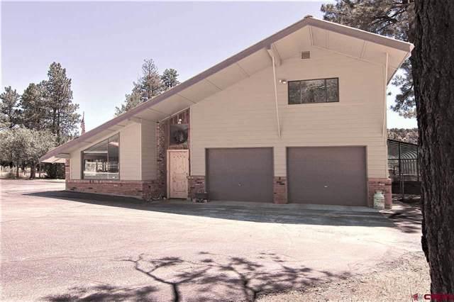 1177 Long Hollow Circle, Durango, CO 81301 (MLS #760326) :: Durango Mountain Realty