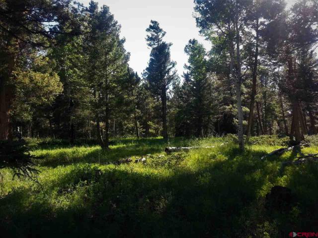 463 Ute Drive, Cimarron, CO 81220 (MLS #760872) :: The Dawn Howe Group | Keller Williams Colorado West Realty