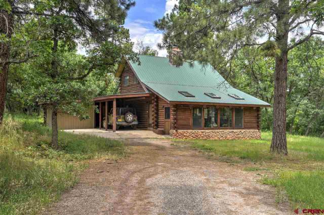 55 Snowshoe Lane, Durango, CO 81301 (MLS #761461) :: Durango Mountain Realty