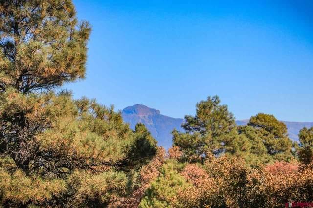 50 Eiffel Court, Pagosa Springs, CO 81147 (MLS #763972) :: The Dawn Howe Group | Keller Williams Colorado West Realty