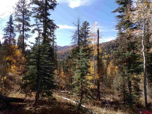 120 Park, Durango, CO 81301 (MLS #764515) :: Durango Mountain Realty