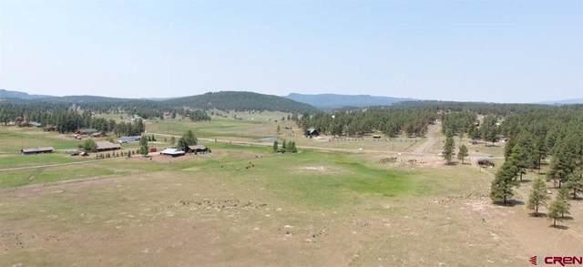 TBD Highway 84, Pagosa Springs, CO 81147 (MLS #765386) :: The Howe Group   Keller Williams Colorado West Realty