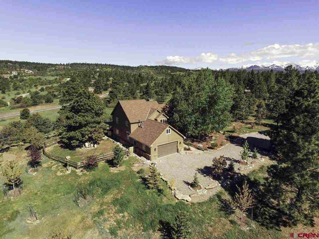 726 Shenandoah Road, Durango, CO 81303 (MLS #765469) :: Durango Mountain Realty