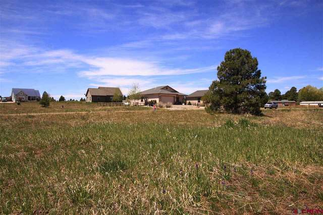 33 & 49 Paradise Drive, Pagosa Springs, CO 81147 (MLS #765972) :: The Dawn Howe Group | Keller Williams Colorado West Realty