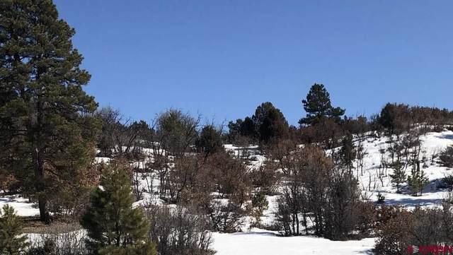 291 Dylan Drive, Pagosa Springs, CO 81147 (MLS #767256) :: The Dawn Howe Group   Keller Williams Colorado West Realty