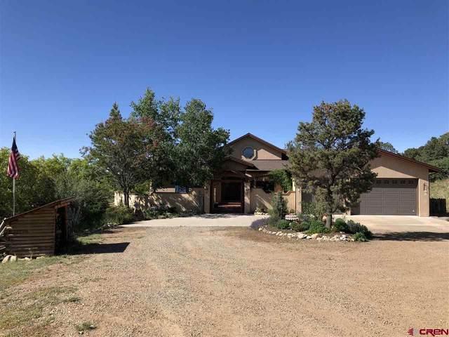 125 Miramonte Dr, Hesperus, CO 81326 (MLS #767558) :: The Dawn Howe Group | Keller Williams Colorado West Realty