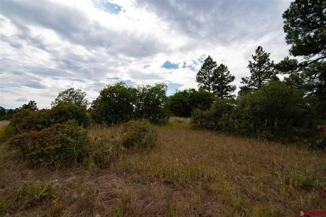 1105 Trails Boulevard, Pagosa Springs, CO 81147 (MLS #767747) :: The Dawn Howe Group | Keller Williams Colorado West Realty