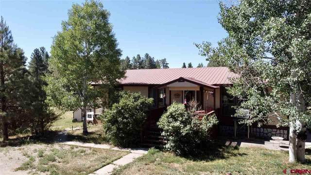 1005 Spring Road, Durango, CO 81303 (MLS #767950) :: Durango Mountain Realty