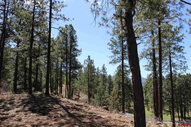 74 Crocus Court, Durango, CO 81301 (MLS #767952) :: Durango Mountain Realty