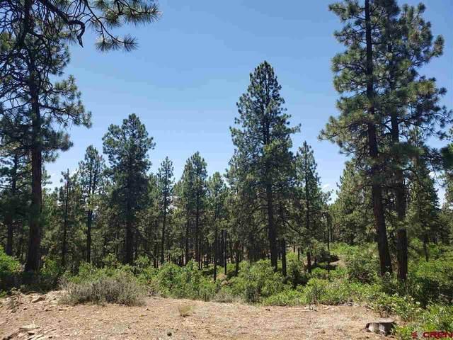 Lot 10 Hawks Meadow Drive, Bayfield, CO 81122 (MLS #768169) :: The Dawn Howe Group | Keller Williams Colorado West Realty