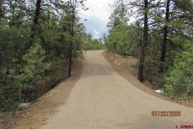 2308 Bull Elk Place, Pagosa Springs, CO 81147 (MLS #768418) :: The Dawn Howe Group | Keller Williams Colorado West Realty