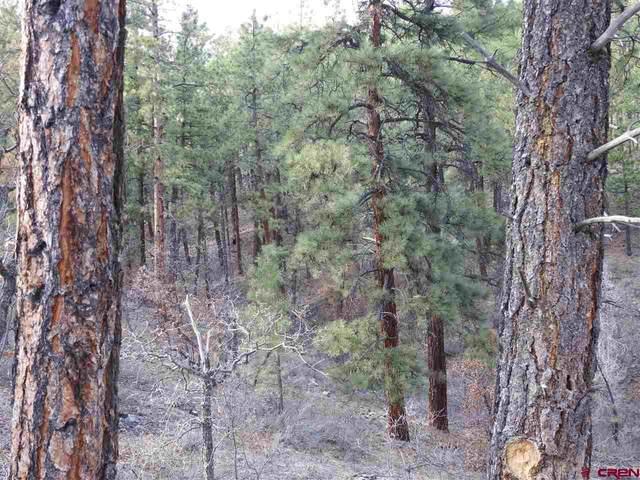97 Canyon Pines Place, Durango, CO 81301 (MLS #768467) :: Durango Mountain Realty