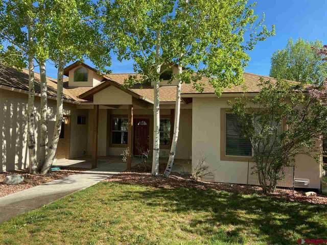 795 Sabeta Drive, Ridgway, CO 81432 (MLS #769276) :: The Dawn Howe Group | Keller Williams Colorado West Realty
