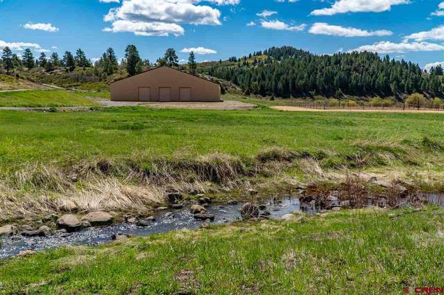 2446a/b Preservation Place, Pagosa Springs, CO 81147 (MLS #769586) :: The Dawn Howe Group | Keller Williams Colorado West Realty