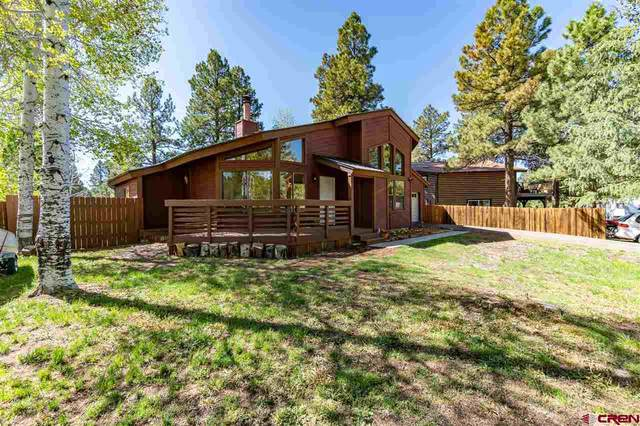 21 E Radiant Court, Pagosa Springs, CO 81147 (MLS #769654) :: The Dawn Howe Group   Keller Williams Colorado West Realty
