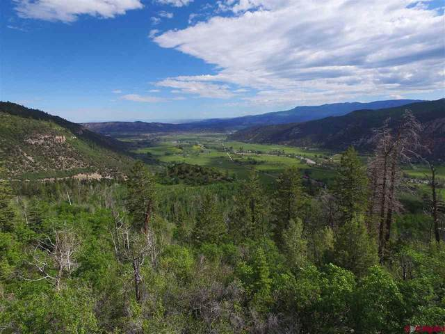 Lot 16 Timber Road, Ridgway, CO 81432 (MLS #769720) :: The Dawn Howe Group   Keller Williams Colorado West Realty
