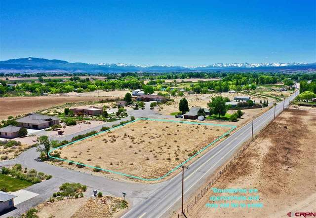TBD Lot 3 Matterhorn Way, Montrose, CO 81403 (MLS #769758) :: The Dawn Howe Group | Keller Williams Colorado West Realty