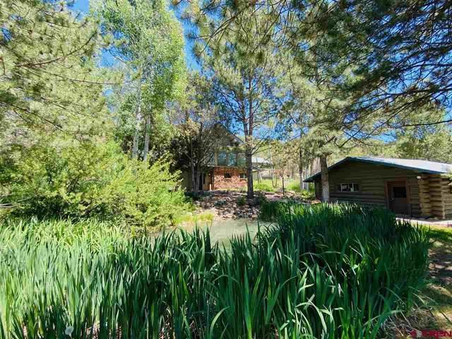 358 Rainbow Road, Durango, CO 81301 (MLS #769809) :: Durango Mountain Realty