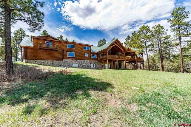 473 N Black Bear Place, Pagosa Springs, CO 81147 (MLS #769847) :: The Dawn Howe Group | Keller Williams Colorado West Realty