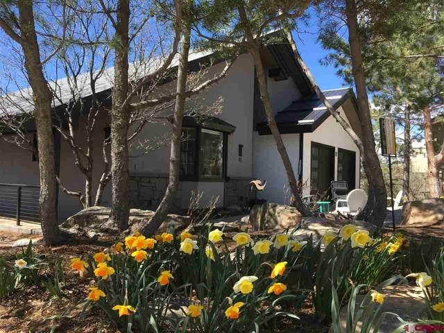 41 Lewis Mountain Lane, Durango, CO 81301 (MLS #770337) :: Durango Mountain Realty