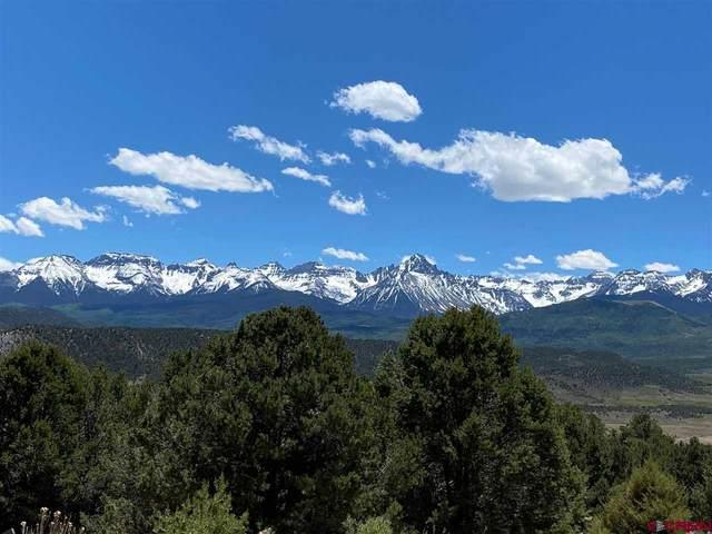 220 Pleasant Valley Court, Ridgway, CO 81432 (MLS #770558) :: The Dawn Howe Group | Keller Williams Colorado West Realty
