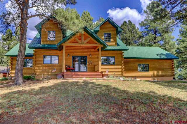 1492 Antelope Avenue, Pagosa Springs, CO 81147 (MLS #770565) :: The Dawn Howe Group | Keller Williams Colorado West Realty