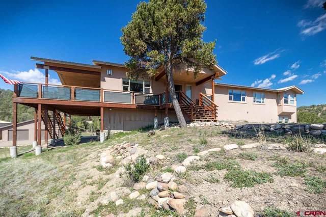 40 Mule Deer, Arboles, CO 81121 (MLS #770905) :: The Dawn Howe Group   Keller Williams Colorado West Realty