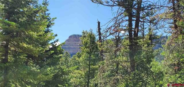1950 Lake Purgatory Drive, Durango, CO 81301 (MLS #771077) :: Durango Mountain Realty